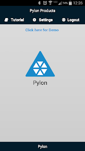 Pylon 1
