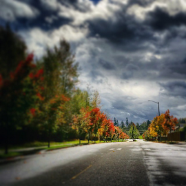 by Todd Reynolds - Instagram & Mobile Android ( fall, toddreynoldsphotography )