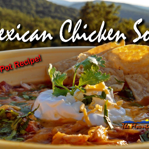 Crock-Pot Mexican Chicken Soup