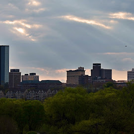 Knoxville by W Leigh Moore - City,  Street & Park  Skylines ( skyline, knoxville, tennessee, trees, sunrise, rays, city )