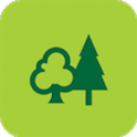 ForestXplorer Old Version icon