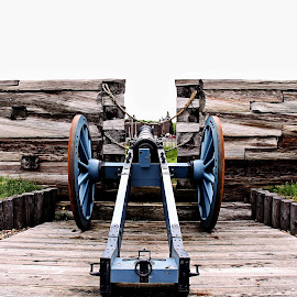 Fort Stanwix cannon by Frank Salvaggio - Buildings & Architecture Statues & Monuments ( history, guns, american revolution, monument, cannon,  )