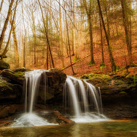 Debord Falls  by Trent Eades - Landscapes Waterscapes ( water, waterfall, debord falls, forest, gold, frozen head,  )