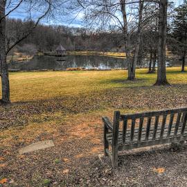 Meadowlark botanical gardens by Tzvika Stein - City,  Street & Park  City Parks ( bench, pond, garden, , public, furniture, object )