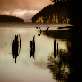 Contrastes by Celina Ortelli - Landscapes Waterscapes