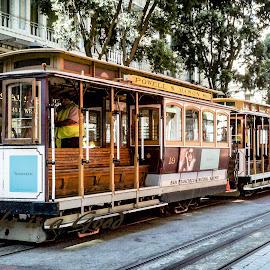 San Fran by Dory Formiller - Transportation Other ( trolly cars, trolly, old time, brown, san fran, transportation, tracks, city street,  )