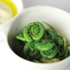 Fiddlehead and Burrata Salad Recipe