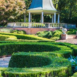 by Matt Meyers - City,  Street & Park  City Parks ( st louis, geometric garden, hedge maze, garden, gazebo, missouri botanical garden )