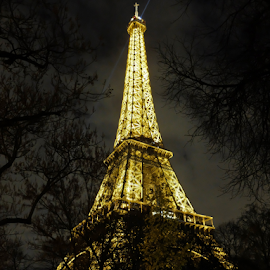 TowerAtNight by Megan Richardson - Buildings & Architecture Public & Historical ( history, lights, eiffel tower, paris, night, france, travel, architecture, french )