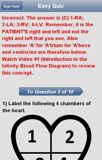 Cardiac Blood Flow - screenshot