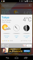 Screenshot of Weather Forecast Widget