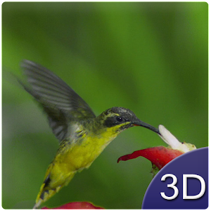 Flying Birds 3D for Android
