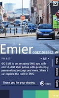 Screenshot of GO SMS Pro Tinct Popup ThemeEX