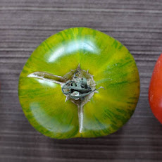 Broiled Asiago Heirloom Tomatoes
