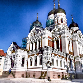 Alexander Nevsky Cathedral at Tallinn, Estonia by Foto Woz - Novices Only Street & Candid