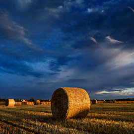 Untitled 14 by Zsolt Zsigmond - Landscapes Prairies, Meadows & Fields ( clouds, sky, hay, hayball, light )