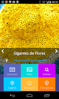 Screenshot of Feria de las Flores