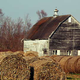 Old Barn & Hay Bales by Marsha Biller - Buildings & Architecture Other Exteriors ( hay, bales, white_barn )