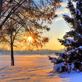 Sunrise over the frozen lake by Zeljko Kliska - Landscapes Sunsets & Sunrises ( HDR, Landscapes, , snow, winter, cold )