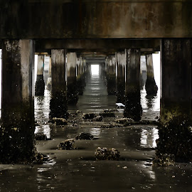 by Jan Herren - Buildings & Architecture Bridges & Suspended Structures