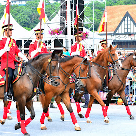 Parade at Merdeka by Kamalaprabhu Rathinasamy - News & Events World Events ( #merdeka #horse #malaysia #kl )