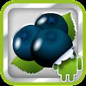 DVR:Bumper - ブラックベリー icon