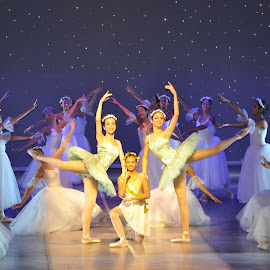 Swan Lake by Junior Ballet Team by Yumna Salah - People Musicians & Entertainers ( girls, swan lake, teens, ballet, dance )