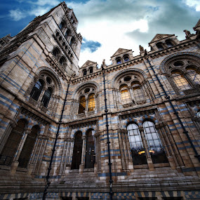 Gothic in London - Natural History Museum by Almas Bavcic - Buildings & Architecture Public & Historical