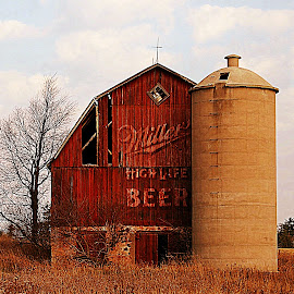 Miller Beer Barn by Norman Stephens - Buildings & Architecture Decaying & Abandoned ( miller beer barn delta county michigan up country fall )