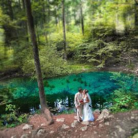 Wedding dream in forest by David Ovidiu - Wedding Bride & Groom ( dream, wedding, forest, bride, groom )