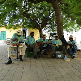Band playing in the park! Trinidad, Cuba by Sherri Hillman - People Musicians & Entertainers