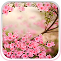 Spring Flowers Live Wallpaper APK for Bluestacks
