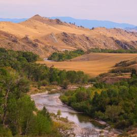 My Favorite Place by Dawn Schriebl Hartley - Landscapes Prairies, Meadows & Fields (  )