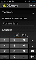 Screenshot of Alerte Budget