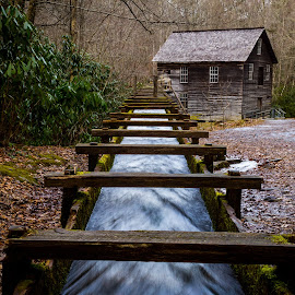 Mingus Mill by j. Michael Hill - Buildings & Architecture Public & Historical ( mill, national park, great smoky mountains, grist mill, historical )