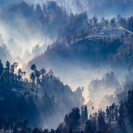 Kabut Pagi Sukapura, Probolinggo, Jawa Timur, Indonesia. by Kamajaya Shagir - Landscapes Mountains & Hills