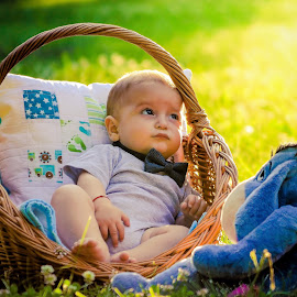 sunshine by Krisztina Fejér - Babies & Children Toddlers ( children, sunshine, baby, toddler, animal )