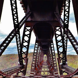 Kinzua Bridge  by Douglas Clifford - Buildings & Architecture Bridges & Suspended Structures