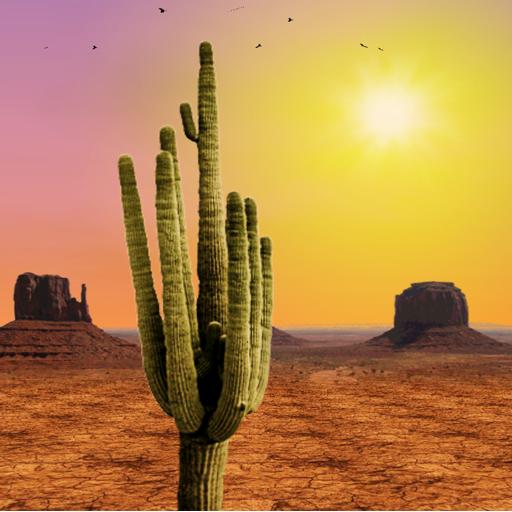 Desert Live Wallpaper LOGO-APP點子