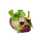 Wine Making Guide icon