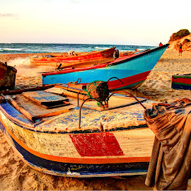 Tofo's fishing boats by Maricha Knight van Heerden - Transportation Boats ( coloured, vintage, bright, inhambane province, tlime stands still here, tofo, rowing boats, antiquated, boat, sunset on the beach, hand painted boat, wooden, fishing boats, timeless, mozambique, fishing, deep sea vessel )