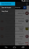 Screenshot of Libertadores 2014