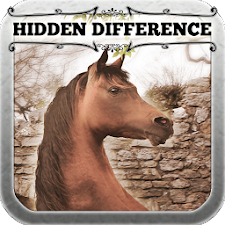 Hidden Difference - Mares