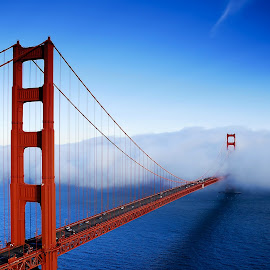 Golden Gate Bridge by Greg Gibb - Buildings & Architecture Bridges & Suspended Structures ( golden gate bridge, ca, suspension bridge, fog, california, pacific, bridge, san francisco )