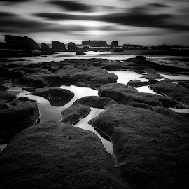 Desolate by Rio Tanusudiro - Black & White Landscapes ( coral, mood, bw, cloudy, rock, quiet, beach, bnw, light )