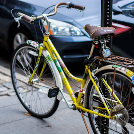 Mellow Yellow by Fernando DaCosta - Transportation Bicycles