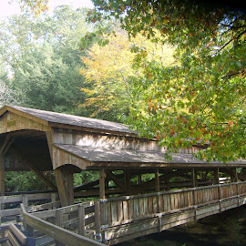 Bridge at Lanterman's Falls by Marcia Taylor - Novices Only Landscapes (  )