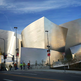 Beauty in Los Angeles by Morris Fremar - Buildings & Architecture Other Exteriors ( for marty )