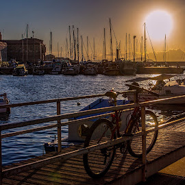 Gone to watch the sunset by Vibeke Friis - Transportation Bicycles ( bike, sunset, harbour, boats,  )