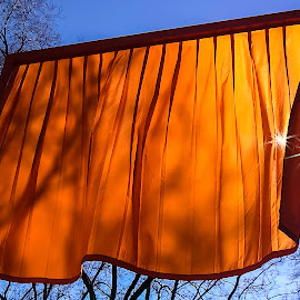 Orange On Blue by Karen Celella - Artistic Objects Other Objects ( orange, wind, complimentary colors, breeze, manhattan, nyc, flow, sun, sky, blue, shadow, stars, trees, fabric, light, orange. color )